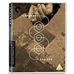 Stalker [THE CRITERION COLLECTION] [Blu-ray] [2017]
